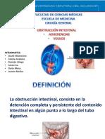 Obstruccion Intestinal Por Adherencias y Volvulos f