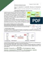 Metabolismo de aminoacidos.pdf