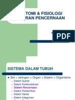Anatomi & Fisiologi Sal Cerna