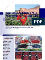 1 Presentacion Actualizacion en El Cultivo de Frutillas Paine 10.11.2017 - Copia