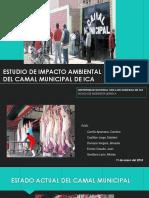 Estudio de Impacto Ambiental del Camal Municipal de Ica