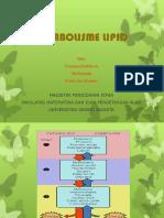Ppt Metabolisme Lipid