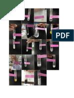 Gambar Protein