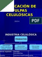 PTQ 02-03 Pulpa y Papel 2010-II