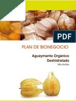 233725735 Plan Aguaymanto Villa Andina FINALIZADO 2013