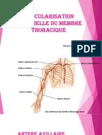 2-Vascularisation Artérielle DU MEMBRE THORACIQUE (1)