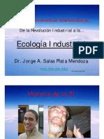 Aplicaciones de La Ecologia Industrial