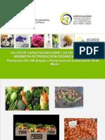 Curso de Normativa Orgánica Ecuatoriana Parte 1