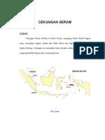 Cekungan Bula (Seram).pdf