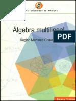 Algebra Multilineal - Regino Martinez Chavanz.pdf