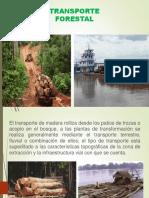 TRANSPORTE-FORESTAL.pdf