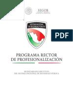 Programa Rector de Profesionalizacion -27 AGOSTO.pdf
