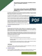 1.- Impacto Ambiental - Sug Gerencia Castrovirreyna