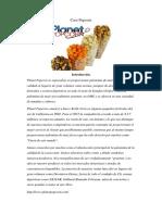 analisis  de empresa pop corn planet
