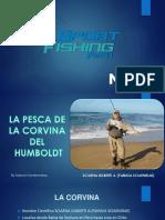 La Pesca de La Corvina Del Humboldt Final