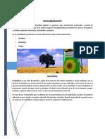 INFORME Biocarburantes
