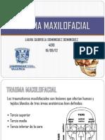 traumamaxilofacial-120816012047-phpapp01