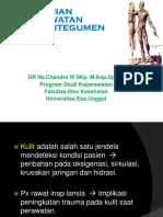 Pengkajian-fisik-sistem-Integumen Pert I UEU Post UTS