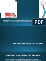 Anatomi Dan Fisiologi Muskuloskeletal