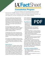 Factsheet Consultations