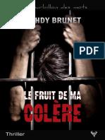 EXTRAIT du roman « Le Fruit de ma colère » de Mehdy Brunet