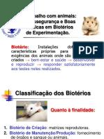 Bio-trabalho Com Animais