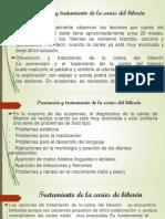 Caries Del Biberón (1)