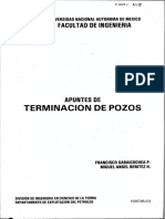 TERMINACION DE POZOS PETROLEROS.pdf