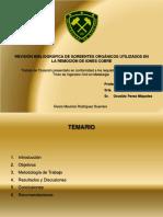 Presentación Álvaro Rodríguez Guerrero (Final)