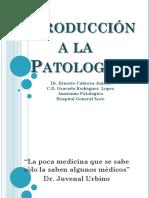02 Introducción a La Patología 2018