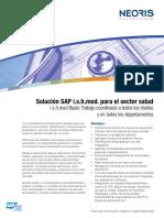 Sap ISH.pdf