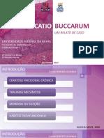 Apresentação do TCC.pdf