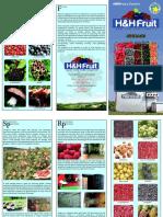 Katalog Skladistenjeiprerada En