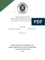 LAPORAN_PENDAHULUAN_CKD.docx