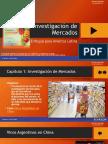 Capitulo I Investigación de Mercados
