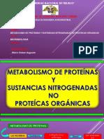 Metabolismo de Las Proteinas y Sustancias No Nitrogenadas