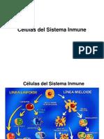 T2A- CELULAS DEL S.I.