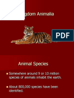 kingdom animalia.ppt