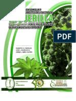 Libro-HiguerillaColombia.pdf