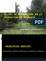 El Uso de Aminoácidos en La Producción de Aguacate