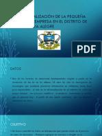 Diagnostico de La Pequeña y Micro Empresa En