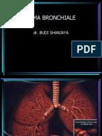Dr.budi.Asma Bronchiale
