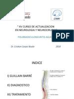 Polirradiculoneuritis Aguda 2018 x Dr. Cristian Carpio Bazán