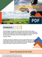 Persiapan Kandang dan Peralatan Ruminansia Perah.pptx