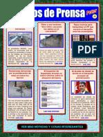 Pellizcos de Prensa-P25