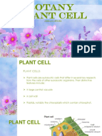 Lecture 4 Plant Cell