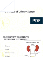 7_ Disorders of Urinary System