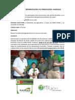 Proyectos de Reforestación Huanuco