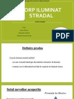 Analiza Strategica a Produsului Corp Iluminat Stradal