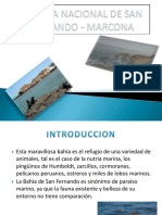 Reserva Nacional de San Fernando Marcona